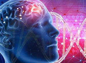 Epileptische Anfälle: Wie man die Symptome erkennen und helfen kann