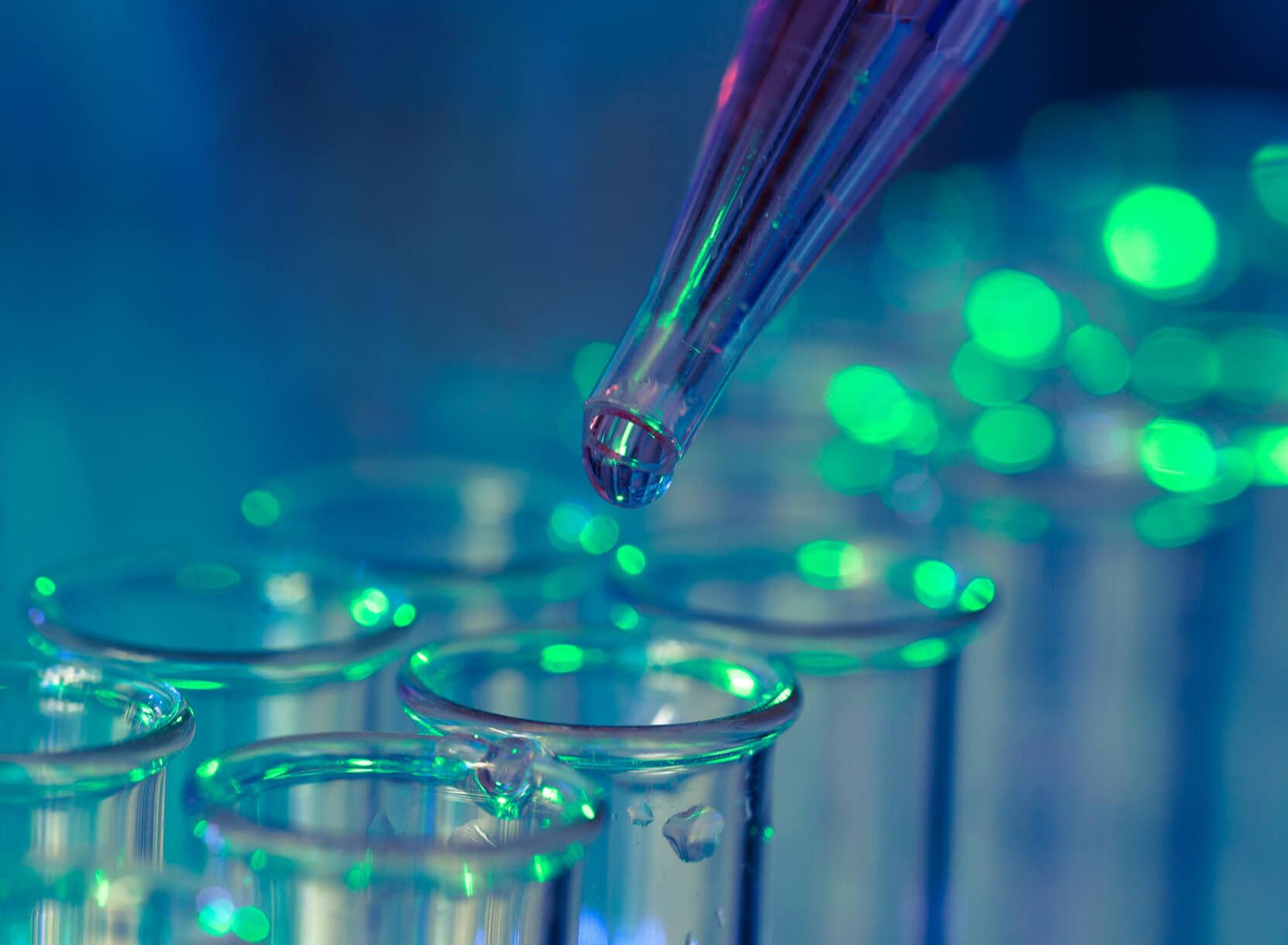 Immunologie, Antikörper und immunologische Tests: Worum handelt es sich?
