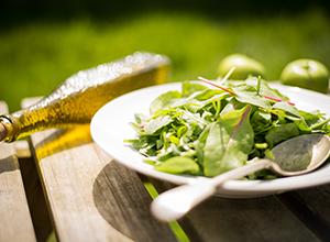 Osterhasen mit reduziertem Fett- und Zuckeranteil