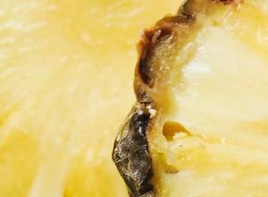 Ananas-Basilikum-Mousse